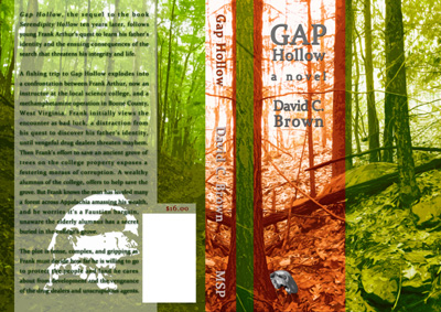 Gap Hollow by David C. Brown
